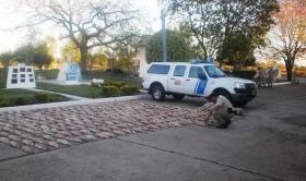 PREFECTURA GOYA Y FAUNA Y FLORA: SECUESTRARON PESCADOS, POR VIOLACION A LAS LEYES DE PESCA
