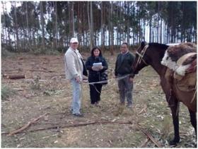 PRODUCCION PRIMARIA REALIZÓ UNA ENCUESTA A PEQUEÑOS PRODUCTORES FORESTALES