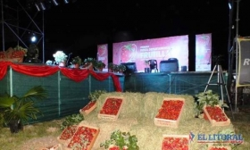 En Desmochado homenajearán a productores de frutilla con la tercera fiesta departamental